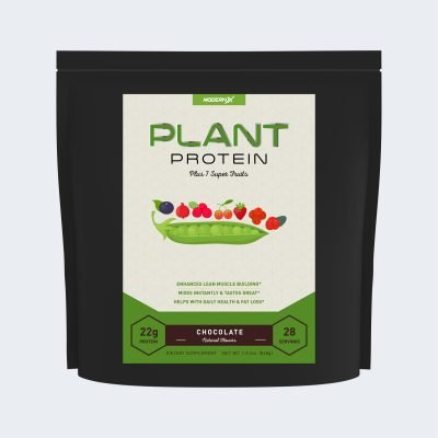Plant Protein Plus 7 Super Fruits by ModernX